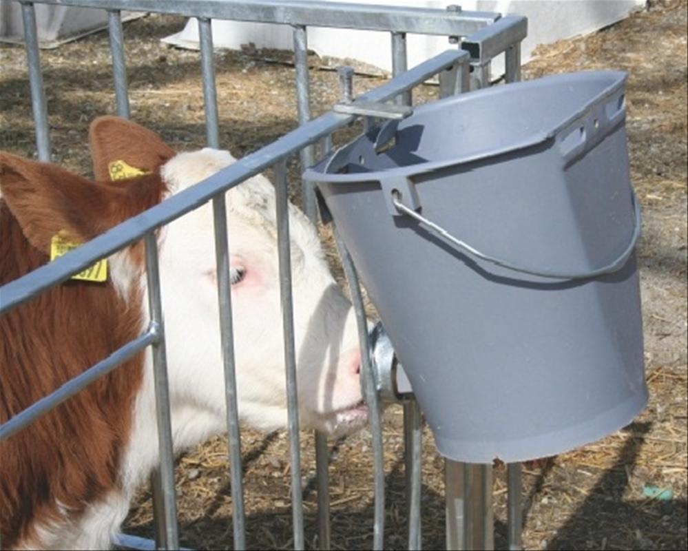 Как сделать автоматические поилки для свиней